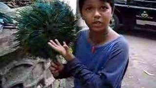 Lingo Kid- Talented Indian Kid speaks many languages