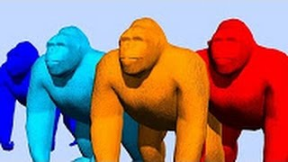 Colour Bear and Gorilla Funny Rhymes For Childrens - 3D Animated Colourful Songs - TSP Kids Rhymes