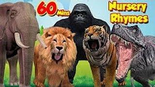 Top Rhymes Compilation For Kids - Popular Kids Songs - Children Educational Videos - TSP Kids Rhymes