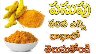 పసుపు వలన ఎన్ని లాభాలో : Unknown Facts and Uses of Tumeric Powder :Nautral Heath Facts In telugu  Y