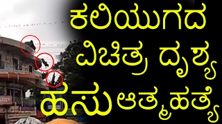 Cow suicide gone viral why cow suicides herself ? Top Kannada TV