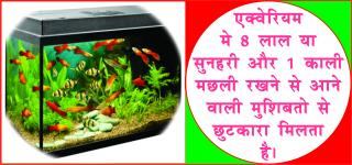 Fish Aquarium for goo luck. #acharyaanujjain घर मे रखे एक्वेरियम, पाये स&#