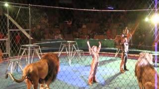 Horrible incident - Amazing Video