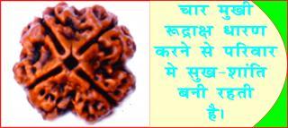 1 to 14 Mukhi Rudraksh brings luck & prosperity. #acharyaanujjain मिलेगी सुख-समृद्धि, यद&#23