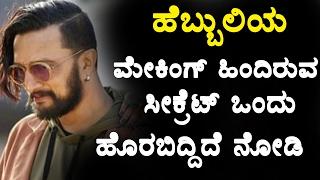 Hebbuli Making Secrets Secrets behind Hebbuli making Top Kannada TV
