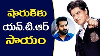 Jr NTR Help to Badshah షారుఖ్ కు ఎన్టీఆర్ సాయం King Khan To Remake Jr NTR Blockbuster Movie