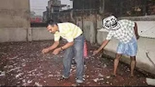 Top 10 Funniest Videos 2017 - New Funny Video - Best Children Funny Videos