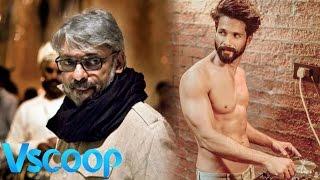 Shahid Kapoor In Sanjay Leela Bhansali's Next - 'Tuesdays & Fridays' #Vscoop