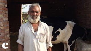 'Gau Rakshaks killed one of our men, that is unlawful' : Yusuf on Gau Rakshak attack in Alwar