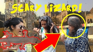 Scaring cute girls with Fake Lizard! | Kala Ghoda 2k17- Virar2Churchgate