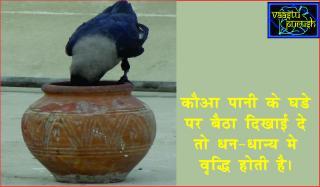 Omens and totems � Birds. #Acharya Anuj Jain शगुन शास्त्र - पक्षी विचार&#2