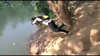 Watch Whatsapp New Funny Videos Malayalam Video Id 331891977e34