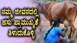why Cows  are important to Human Life | Save cows | Cow milk | Top Kannada TV