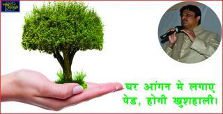 #Prosperity by Plants in Vastu. घर आंगन मे लगाए पेड, होगी खुशहाली।