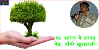 #Prosperity by Plants in Vastu. घर आंगन मे लगाए पेड, होगी खुशह
