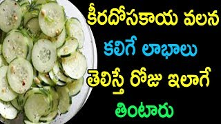 Amazing Benefits of Cucumber | Cucumber Health Benefits | Healthy Tips in Telugu