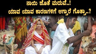 Reason behind Marriage with dogs | Kannada Top Secrets | Kannada | Top Kannada TV
