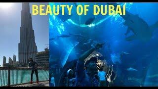 Explore BURJ KHALIFA With Aquarium And UnderWater Zoo  DUBAI