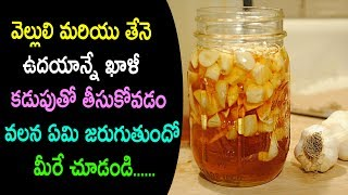 Boost Your Immune System with Garlic Infused Honey|Garlic and Honey Recipe benefits