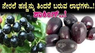 Amazing Health Benefits of Jamun Fruit | Health Tips | Top Kannada TV