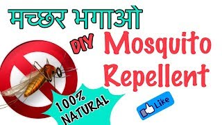 DIY Natural Mosquito Repellent | Homemade Natural Mosquito Repellent | JSuper Kaur