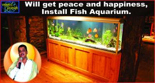 #Will get peace and happiness, Install Fish Aquarium.