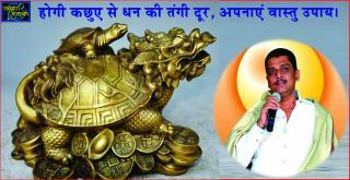 #Will pacify Wealth related problems, try these Vastu remedies. होगी कछुए से धन की तंगी &#23