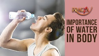 Importance Of Water In Body Dr. Shikha Sharma (Dietician)