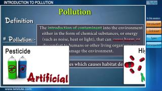 Introduction to Pollution | Letstute