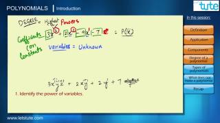 Introduction to Polynomials | Letstute