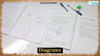 Science Paper Presentation Tips | Letstute