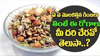 ఏ ఏ మొలకెత్తిన గింజలు తీసుకుంటే ఏ ఏ రోజలు రావో తెలుసా|Use of  Sprouted seeds|Top Telugu Tv