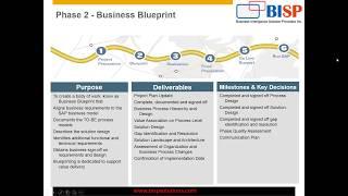 SAP Implementation Project Management  Introduction Session