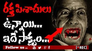 Facts About The Real Dracula l Rectv Mystery