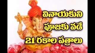 వినాయకుని పూజకు వాడే 21 రకాల పత్రాలు (పత్రి)Vinayaka Chavithi Pooja Vidhanam in Telugu||TopTeluguTv