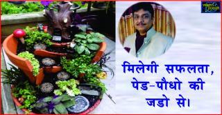 Vastu tips for Plants and Tree in Hindi. मिलेगी सफलता, पेड-पौधो की ज&#2337