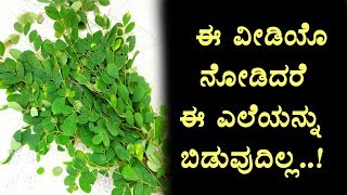 Health Benefits of drumstick vegetable leaves | Kannada Health TV | Top Kannada TV