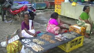 Fish Market Cherai Beach Kerala | Street Market Selling Fresh Fish