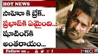 Prabhas fall Sick in Sahoo Shooting l #prabhas #sahoo #ShraddhaKapoor #rectvindia #telugufilmnews