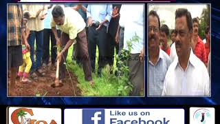 TREE PLANTATION DRIVE AT COLVALE HOUSING BOARD