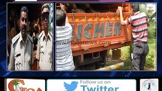 Loggers caught trafficking timber in truck bound for Maharashtra