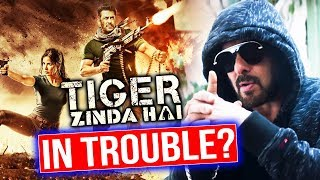 Salman Khan's Tiger Zinda Hai Release GETS In Trouble Coz Of CBFC?