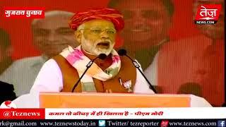 Narendra Modi Gujarat LIVE |  कमल तो कीचड़ में ही खिलता है - पीएम मोदी