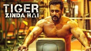 Salman Khan SHARES Tiger Zinda Hai FITNESS SECRET - Salman Khan Shirtless In Tiger Zinda Hai