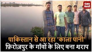 पाकिस्तान से आ रहा 'काला पानी' फ़िरोज़पुर के गाँवों के लिए बना शराप