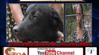 Man Tries To Kill Dog With Acid