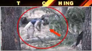 Forests On Sale To Smugglers In Kashmir Full Report Coming Soon