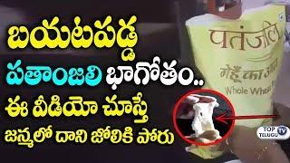 బయటపడ్డ పతాంజలి భాగోతం | Patanjali plastic wheat flour - Must Watch | Top Telugu TV
