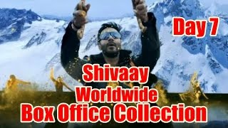 Shivaay Worldwide Box Office Collection Day 7