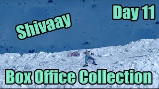 Shivaay Box Office Collection Day 11